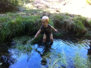 Mason in Buckhorn creek near house