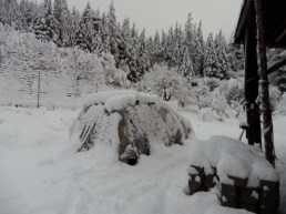 Winter 2013/14